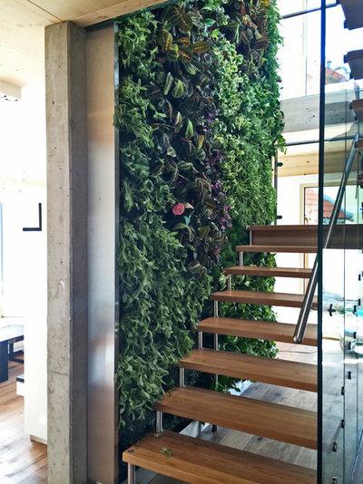 indoor gardening 10 ideen f r gr ne oasen ohne balkon und garten. Black Bedroom Furniture Sets. Home Design Ideas