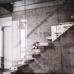 他の地域の大きい木のコンテンポラリースタイルのおしゃれな階段 (金属の手すり) の写真