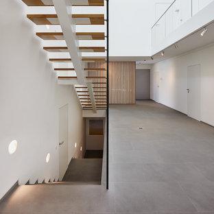 ケルンの巨大な木のコンテンポラリースタイルのおしゃれな階段の写真