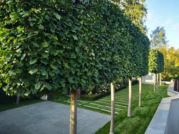 Неоклассика Сад by BUGAEV Parks & Gardens