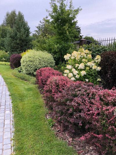 Сад by Разумный сад