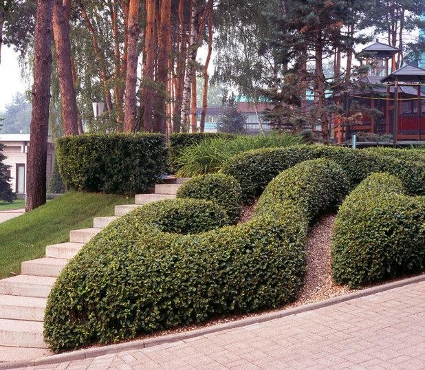 Классический Сад by Компания Arteza