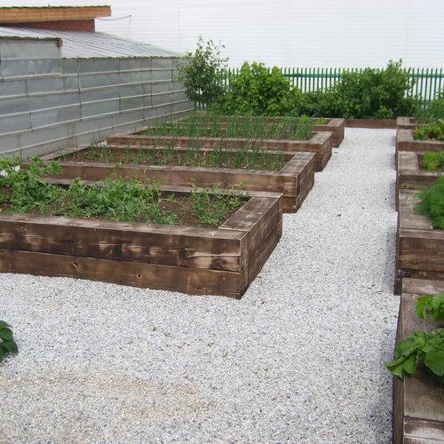 Jardin avec du gravier Ekaterinbourg : Photos et idées déco ...