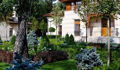 Проект недели: Регулярный и пейзажный сад на лесном участке
