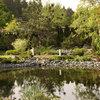 Проект недели: Сад с каменистым ручьём у пруда