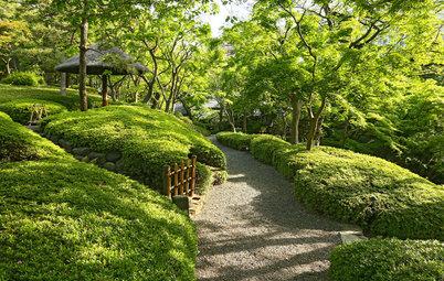自宅に日本庭園をつくるには?烏賀陽百合さんに聞く
