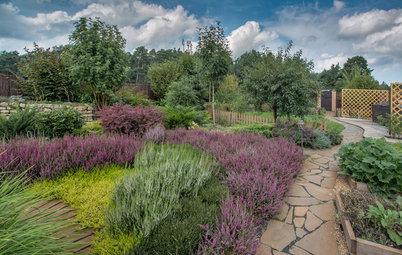 Сад недели: с вересками, злаками и лесной зоной