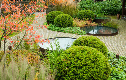 Why Fall Is the Best Time for Planting