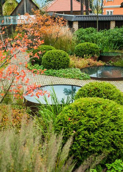 Современный Сад by Ландшафтное бюро Мох