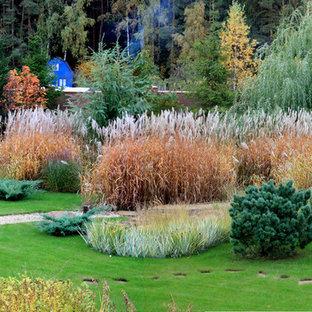 Idéer för att renovera en mellanstor funkis gårdsplan i full sol som tål torka på hösten, med grus och en trädgårdsgång