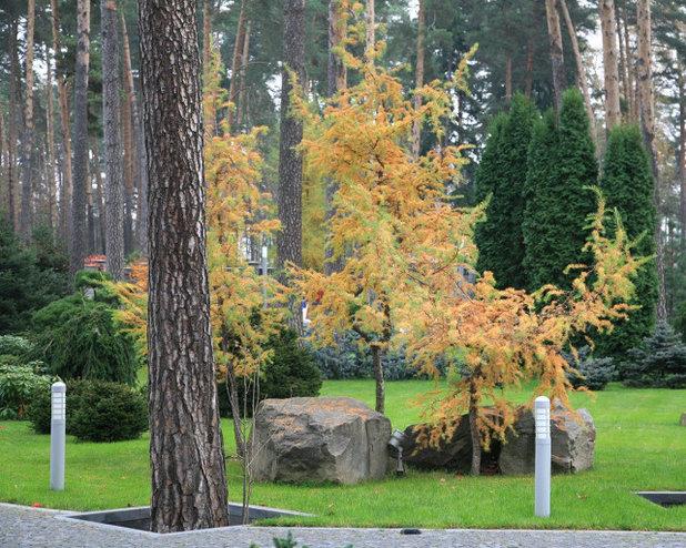 Современный Сад by ARCADIA GARDEN Ландшафтная Студия