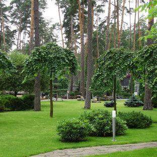 Свежая идея для дизайна: летний участок и сад в современном стиле с полуденной тенью - отличное фото интерьера