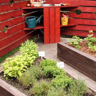 Cette photo montre un petit jardin potager tendance l'été.