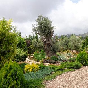 Пример оригинального дизайна интерьера: участок и сад в средиземноморском стиле
