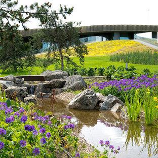 На фото: большой солнечный, летний участок и сад на заднем дворе в современном стиле с хорошей освещенностью и покрытием из гравия с