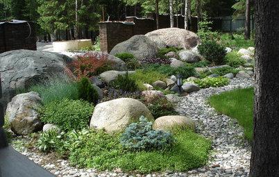 Хочу-могу: Сад «с нуля» —за 500 тысяч, 1 млн и 1,5 млн