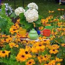 Азбука садовода: Каким садовым растениям надо зимовать внутри дома