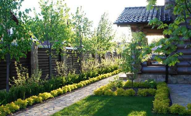 Как сделать навес на длинном и узком участке двора