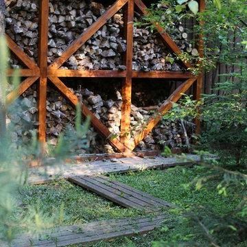 В гостях у леса