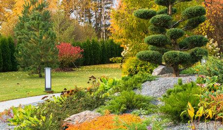 Вопрос: Что важно успеть в саду осенью