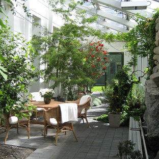 Foto de patio actual, de tamaño medio, en patio lateral y anexo de casas, con jardín vertical y losas de hormigón