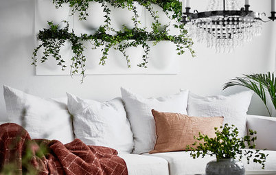 How to Style Your Home With House Plants (and Their Accessories)