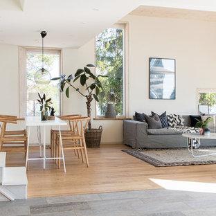 Exempel på ett skandinaviskt allrum med öppen planlösning, med vita väggar, kalkstensgolv, flerfärgat golv och ett finrum