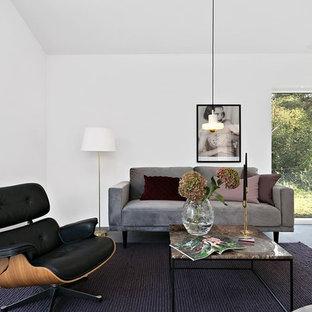 Idéer för minimalistiska vardagsrum, med vita väggar och grått golv