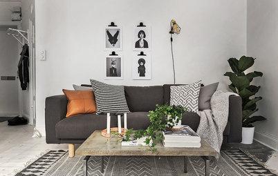 Praktisk pudeguide: Sådan vælger du perfekte bløddyr til sofaen
