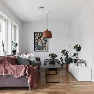 Exempel på ett minimalistiskt vardagsrum, med vita väggar, mellanmörkt trägolv och brunt golv