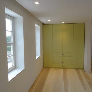 Foto di un armadio o armadio a muro unisex minimal di medie dimensioni con ante lisce, ante verdi e parquet chiaro