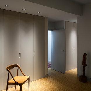 EIngebautes, Mittelgroßes, Neutrales Modernes Ankleidezimmer mit flächenbündigen Schrankfronten, Sperrholzboden und grauen Schränken in London