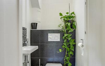 トイレのインテリアを素敵に。こだわりたい9つのポイント