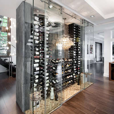 Inspiration for a large contemporary dark wood floor and brown floor wine cellar remodel in Ottawa with display racks