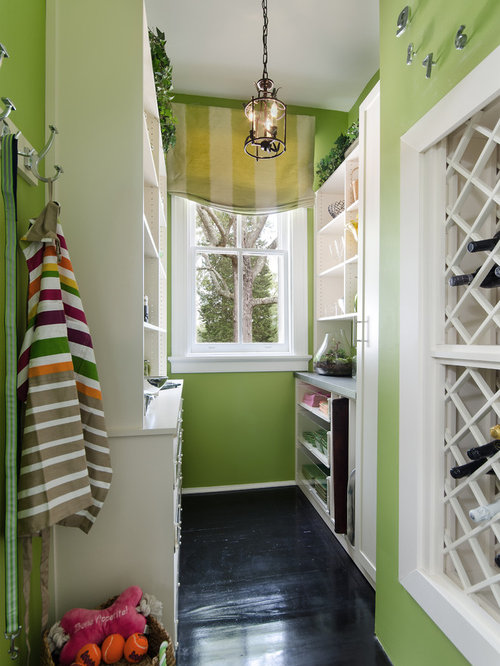 Paint Color Wine Cellar Design Ideas Remodels Photos