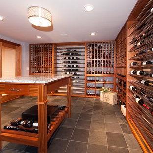 Contemporary basement/wine cellar and tasting room
