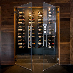 Modern Wine Cellar Design Ideas Amp Remodeling Pictures Houzz