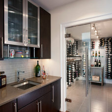 Contemporary Wine Cellar by Swerdloff Properties Inc.