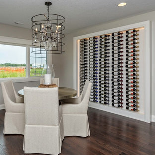 Design ideas for a medium sized traditional wine cellar in Other with dark hardwood flooring and display racks.