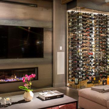 Modern Glass Enclosed Wine Cellar