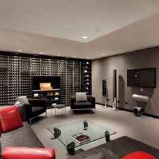 Contemporary Wine Cellar by Reed R. Krueger & Associates