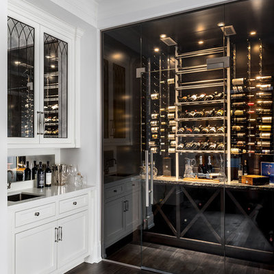 Inspiration for a mid-sized contemporary dark wood floor and brown floor wine cellar remodel in Toronto with storage racks