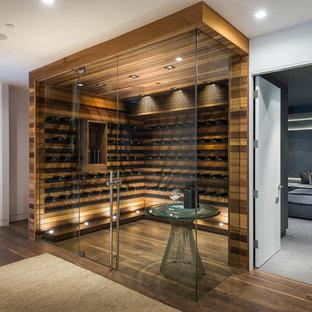 Exempel på en modern vinkällare, med mörkt trägolv, vinhyllor och brunt golv