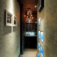 Transitional Wine Cellar by Papro Consulting - Wine Cellars