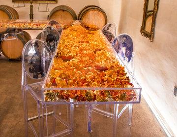 Tasting Room: Buena Vista Winery