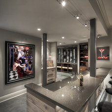 Modern Wine Cellar Wine Cellar - Bar