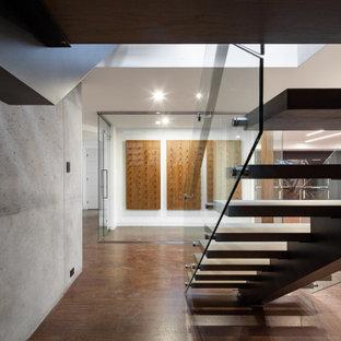 Ejemplo de bodega minimalista, grande, con suelo de corcho, vitrinas expositoras y suelo marrón