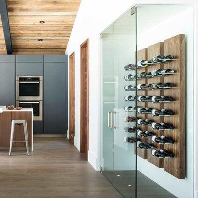 Wine cellar - contemporary dark wood floor wine cellar idea in Denver