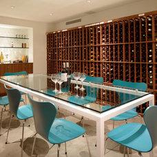 Modern Wine Cellar by Ehrlich Architects