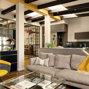 Foto di un grande soggiorno eclettico con pareti grigie e parquet scuro